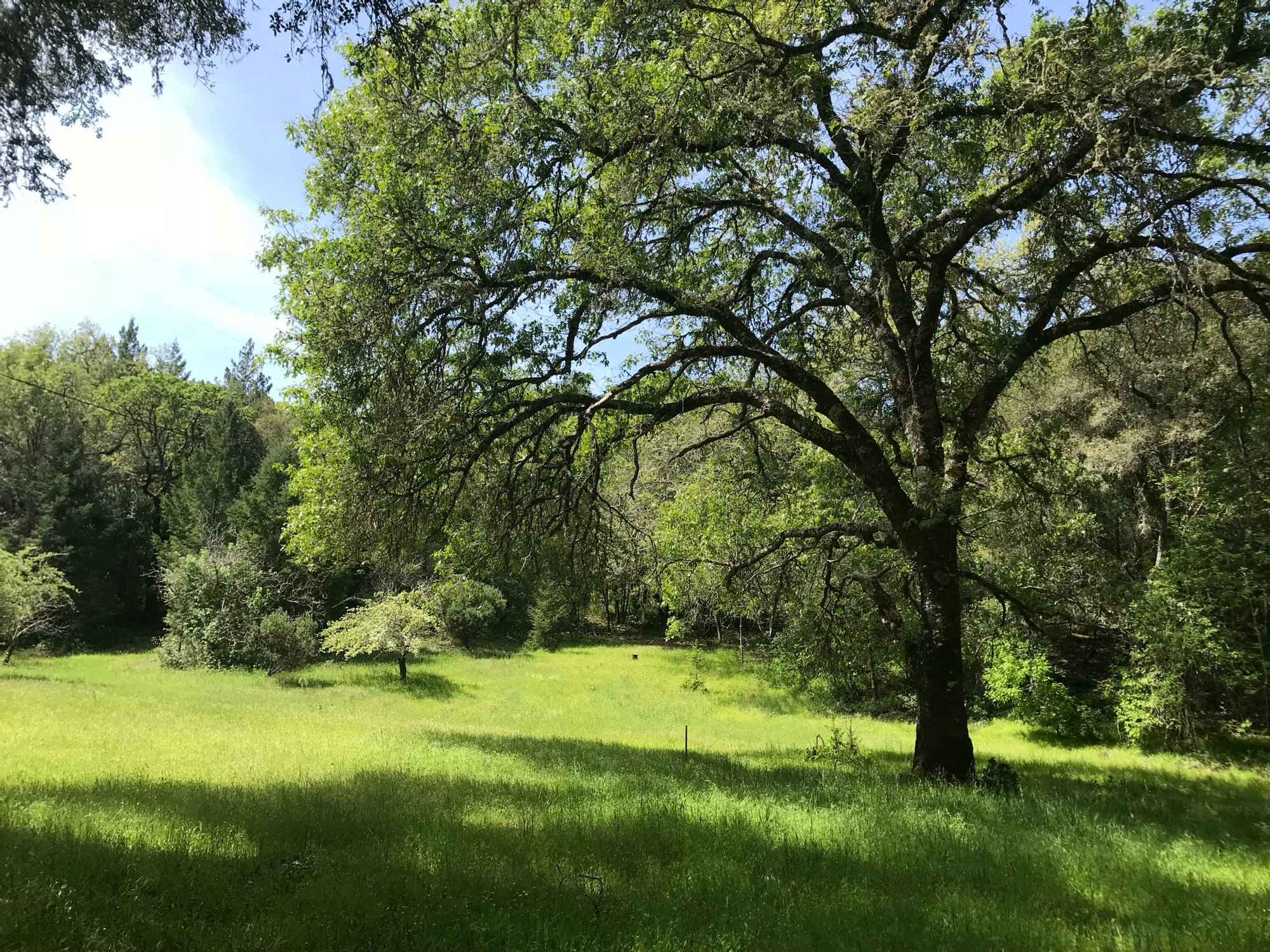 Land in Napa, California, United States 1