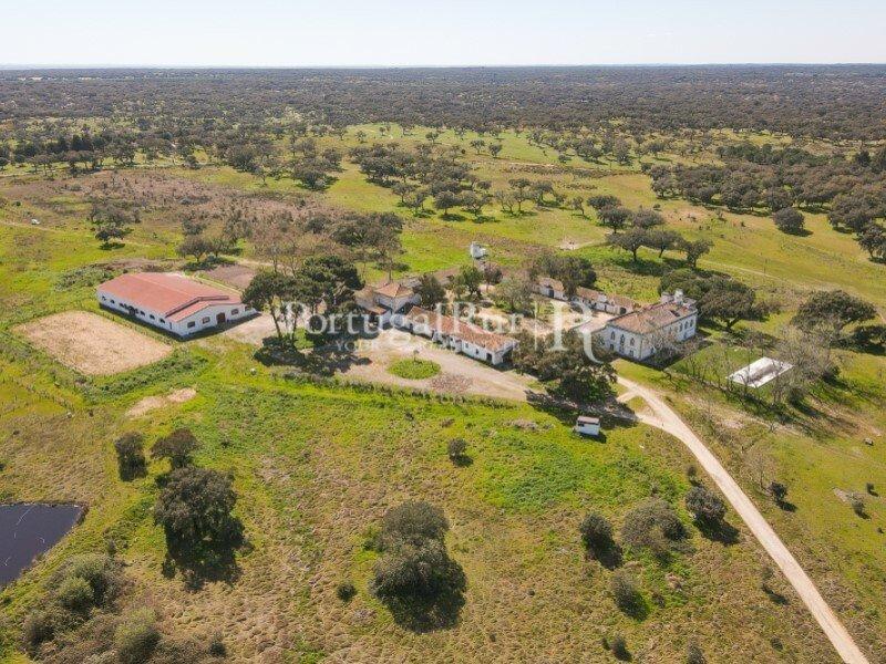 Farm Ranch in Ponte de Sor, Portalegre District, Portugal 1