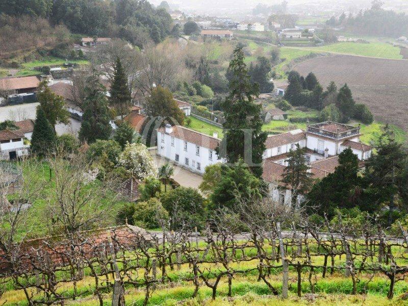 Farm Ranch in Porto, Portugal 1