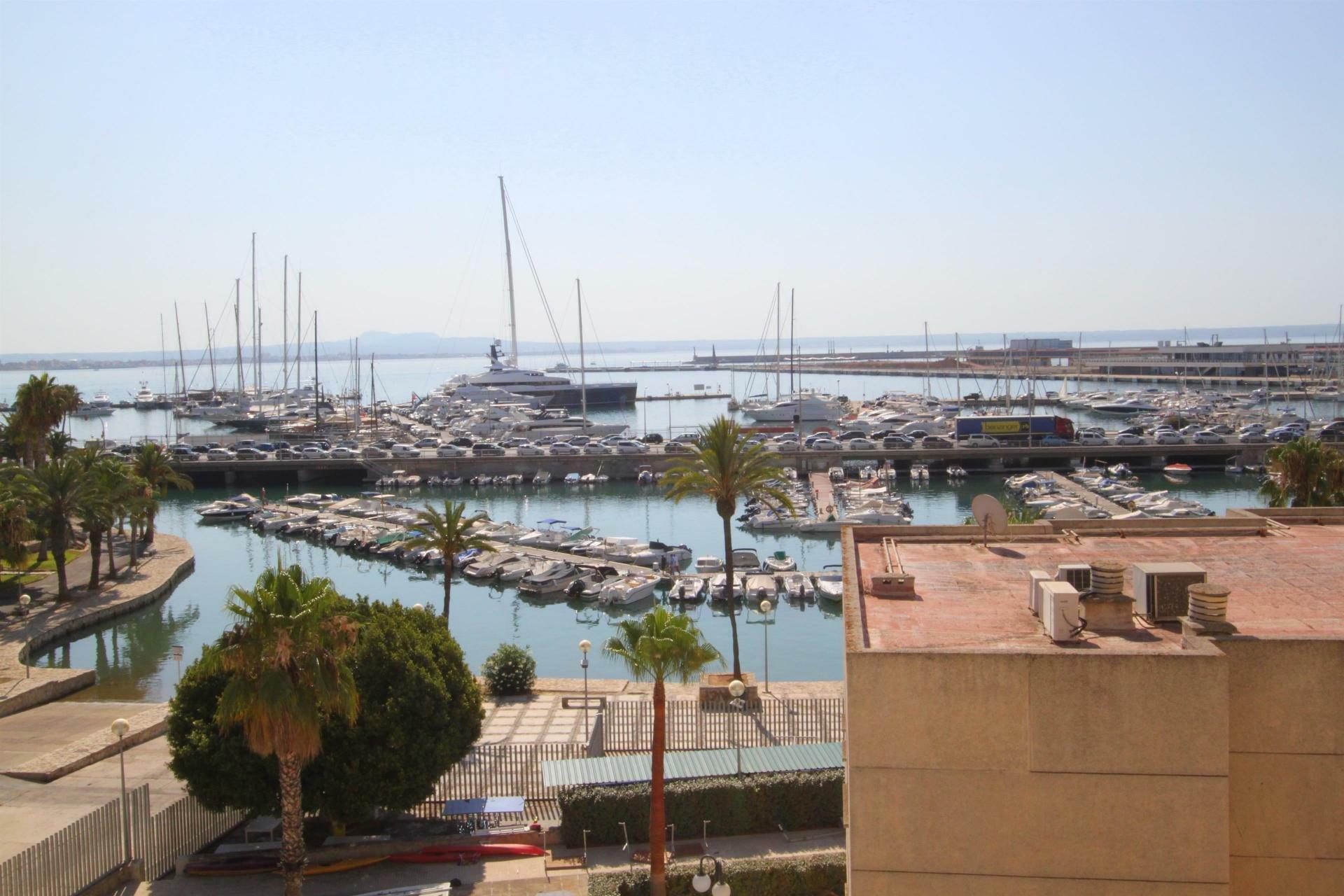 Apartment in Palma, Illes Balears, Spain 1 - 11053200