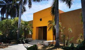 House in Mezcales, Nayarit, Mexico 1