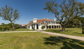 Farm Ranch in Santo Estêvão, Distrikt Santarém, Portugal 1