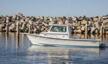 Steiger Craft 26' Chesapeake Ocean Series
