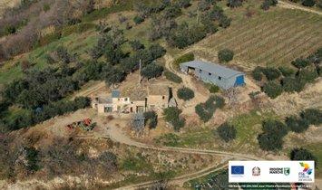 Rancho en Marcas, Italia 1