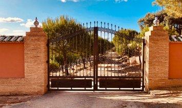 Farm Ranch in Huelva, Andalusia, Spain 1