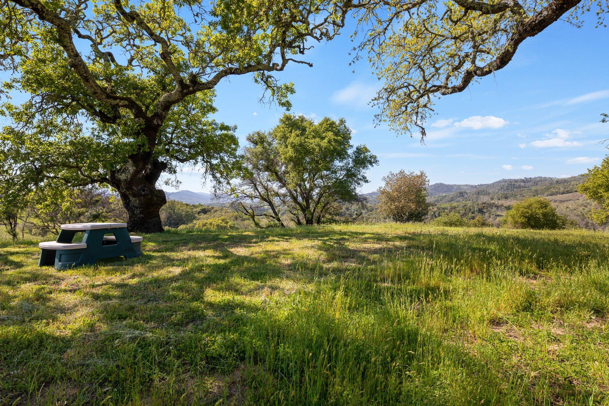 Farm Ranch in Geyserville, California, United States 1
