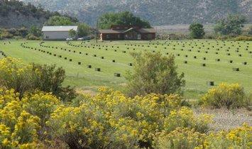 Boerderij Ranch in Cortez, Colorado, Verenigde Staten 1
