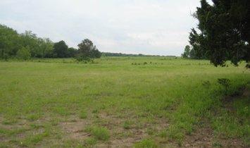 Terreno en Celeste, Texas, Estados Unidos 1