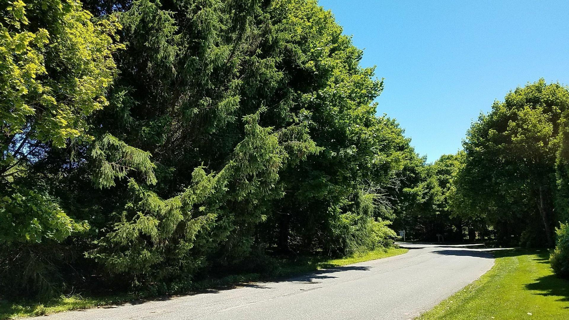 Land in East Hampton, New York, United States 1