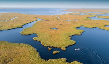 Conservation Experience with Kristine Tompkins at Iberá National Park, Argentina