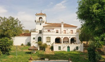 House in Hinojos, Andalusia, Spain 1