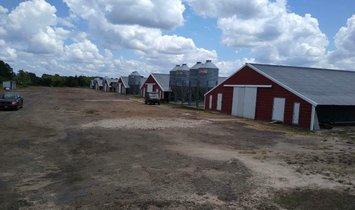 Фермерское ранчо в Уиннсборо, Техас, Соединенные Штаты Америки 1