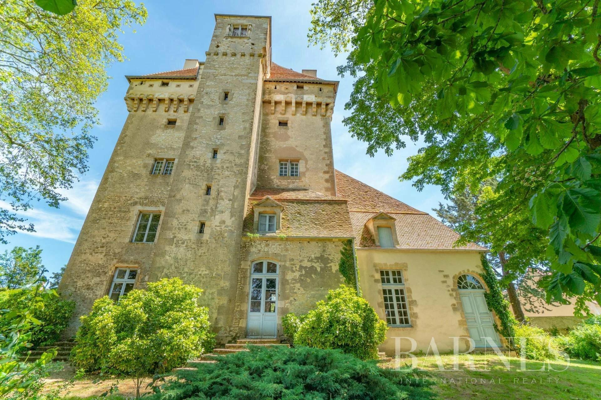 Castello a Bourges, Centro, Francia 1 - 11420872