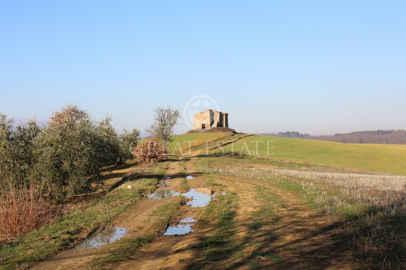 Farm Ranch in Monteleone d'Orvieto, Umbria, Italy 1 - 10673624