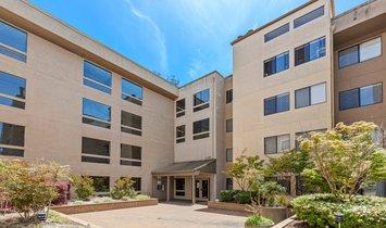 Haus in Albany, Kalifornien, Vereinigte Staaten 1