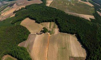 Azienda agricola a Bailey, Carolina del Nord, Stati Uniti 1