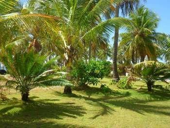 House in Camaçari, State of Bahia, Brazil 1 - 11503608