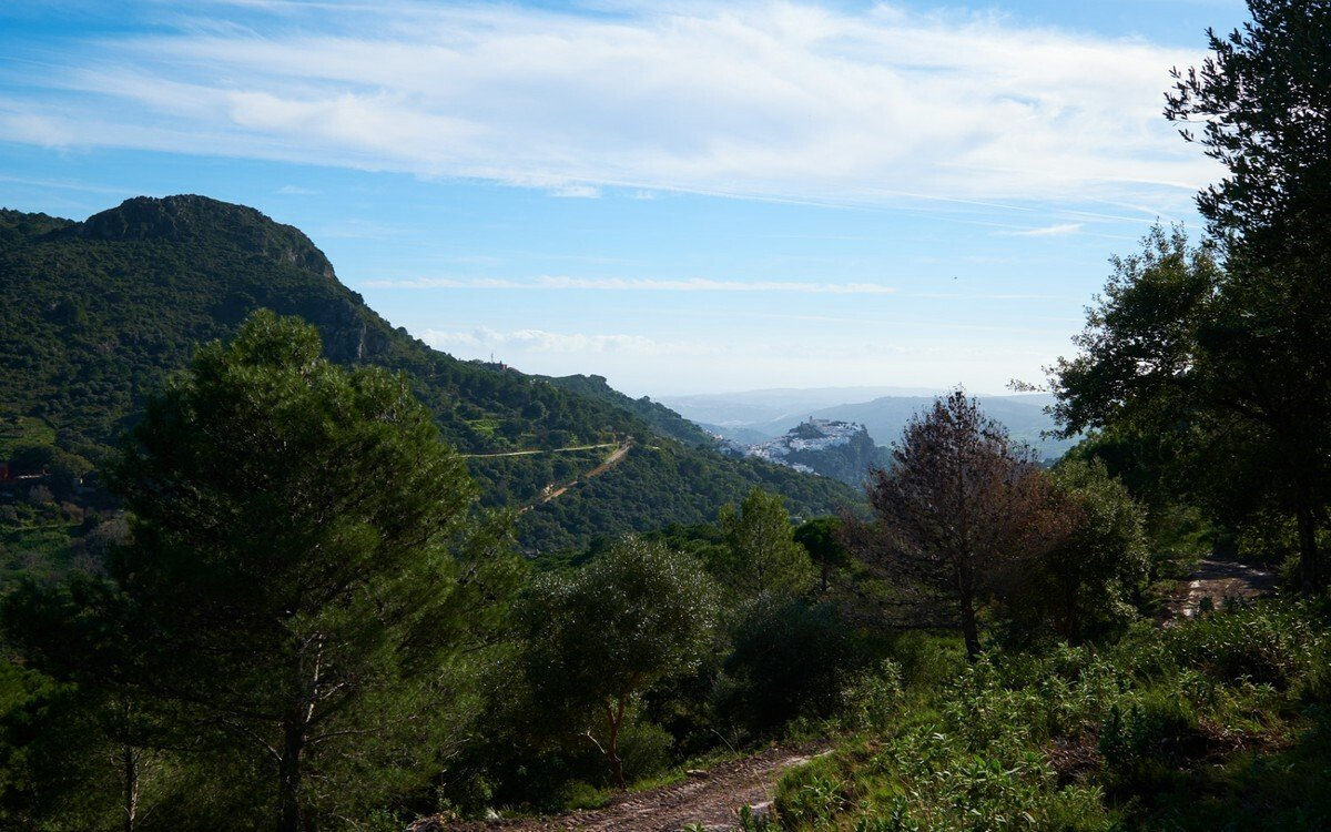 Land in Casares, Andalusia, Spain 1 - 11284352