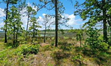 Terrain à Ridgeland, Caroline du Sud, États-Unis 1