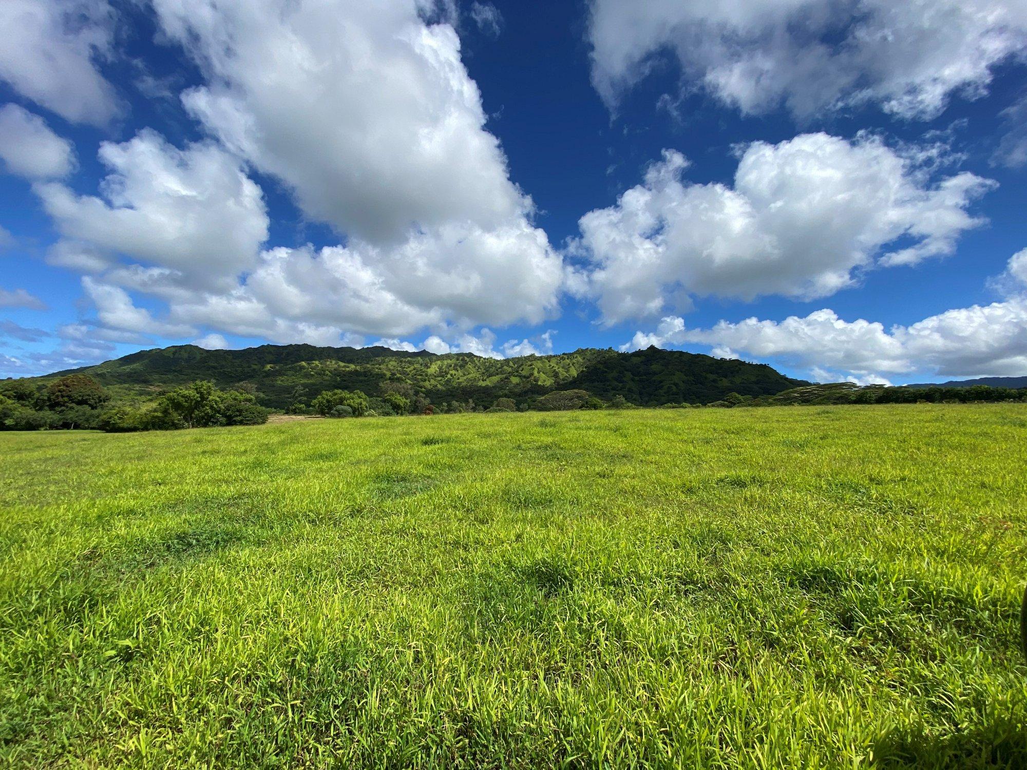 Land in Kilauea, Hawaii, United States 1 - 11521148