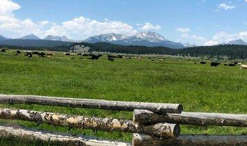Farm Ranch in Jackson, Montana, United States 1