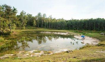 Land in Ebro, Florida, United States 1