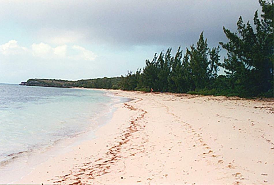 Земля в Пиджен Кей Бич, Кэт Айленд, Багамы 1 - 11553845