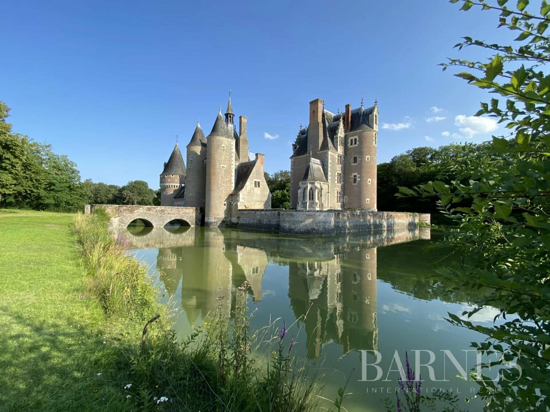 Castle in Romorantin-Lanthenay, Centre-Val de Loire, France 1