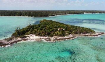 Частный остров в Мангров-Ки Сетлемент, Мангров-Ки, Багамы 1