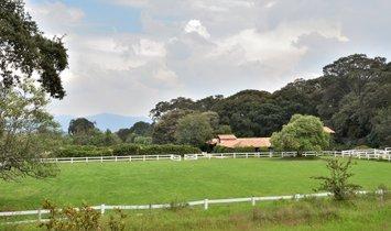 Фермерское ранчо в Буэнависта, Штат Мехико, Мексика 1