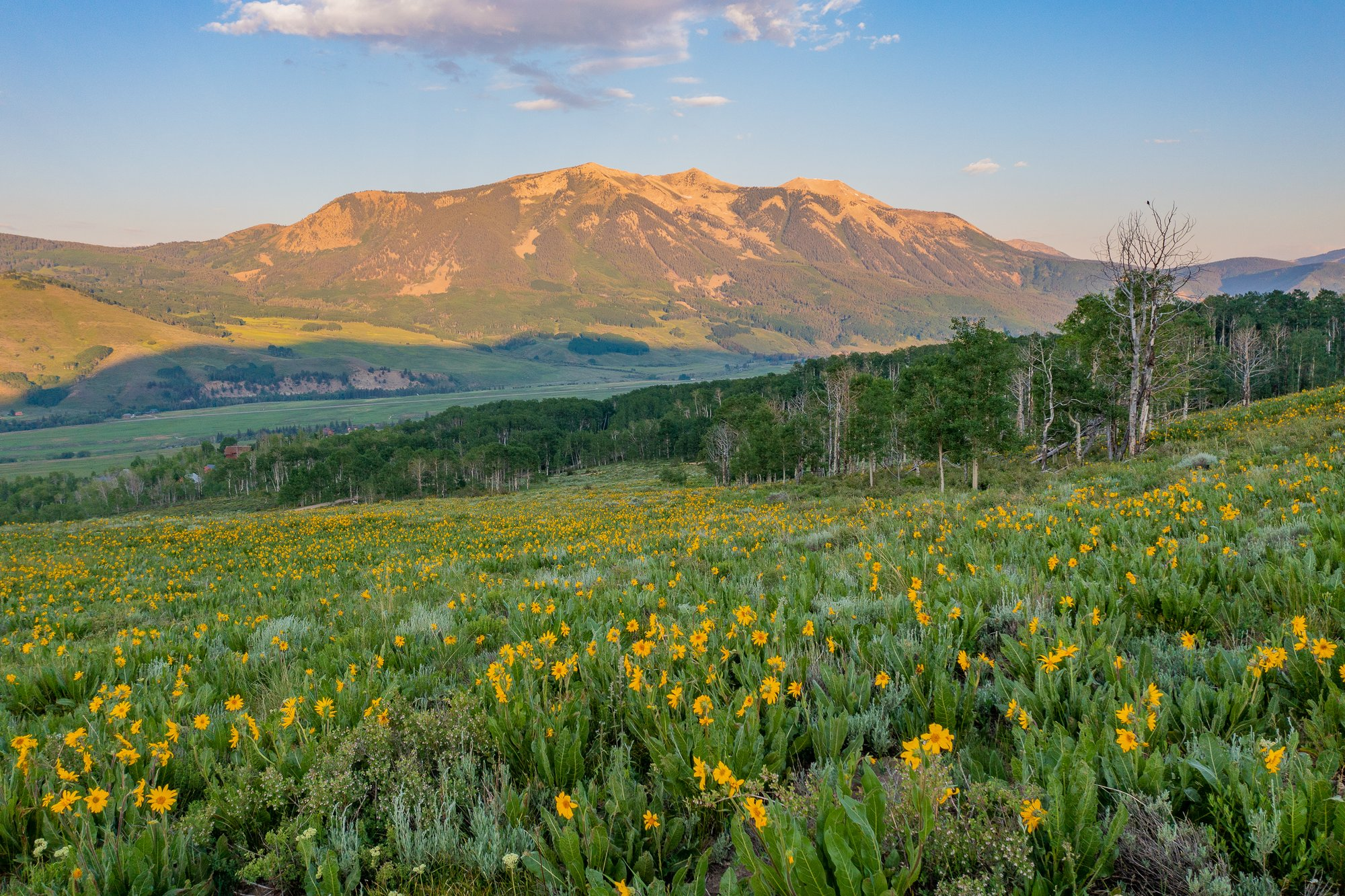 Land in Crested Butte, Colorado, United States 1 - 11436653
