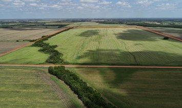 Land in Brookston, Texas, United States 1
