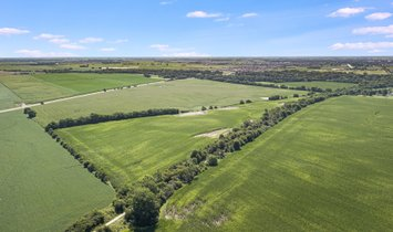 Farm Ranch in Peotone, Illinois, United States 1