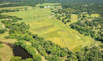 Farm Ranch in Springtown, Texas, United States 1