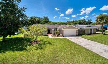 Дом в Палм-Харбор, Флорида, Соединенные Штаты Америки 1