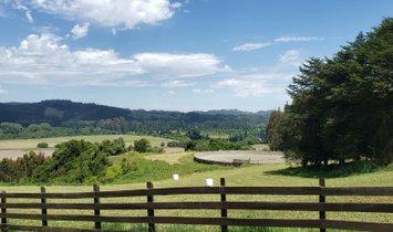 Farm Ranch in Los Chilcos, Los Ríos, Chile 1