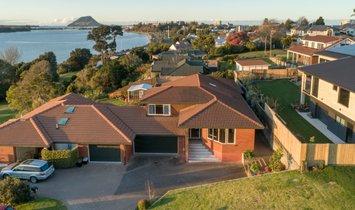 House in Tauranga, Bay of Plenty, New Zealand 1