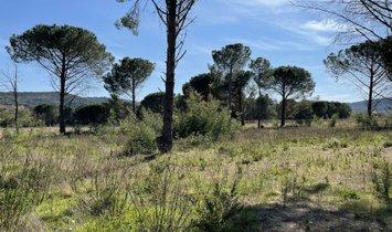 Land in Cogolin, Provence-Alpes-Côte d'Azur, France 1