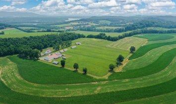 Фермерское ранчо в Hamburg, Пенсильвания, Соединенные Штаты Америки 1