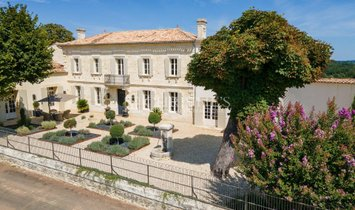 House in Libourne, Nouvelle-Aquitaine, France 1