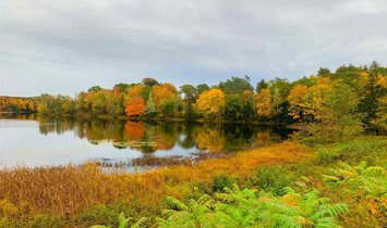 Land in Carleton, Nova Scotia, Canada 1